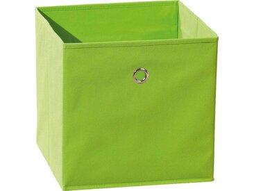INOSIGN Faltbox »Winny Grün«