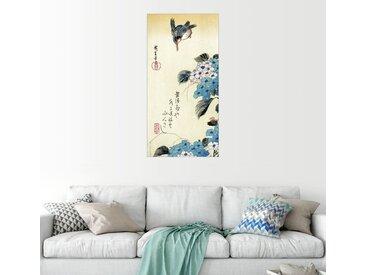 Posterlounge Wandbild, Hydrangea und Eisvogel, Premium-Poster
