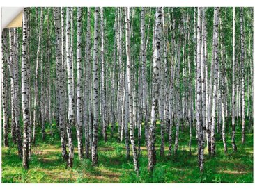 Artland Wandbild »Birkenwald«, Wald (1 Stück), Wandaufkleber - Vinyl