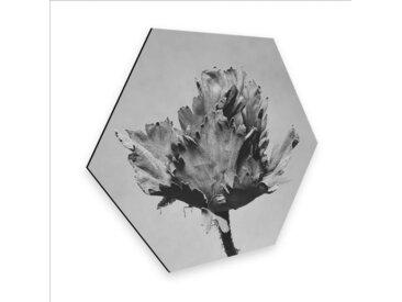 Wall-Art Metallbild »Botanisches Wandbild Blumen«, (1 Stück)