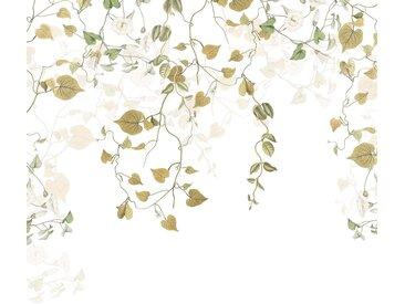 Komar Fototapete »Hedera«, glatt, floral, natürlich, Wald, (Packung)