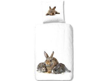 good morning Bettwäsche »Cute Rabbits«, mit Kaninchen