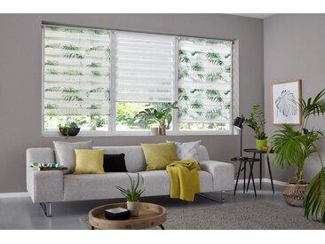 my home Doppelrollo »Marano«, Lichtschutz, ohne Bohren, freihängend, im Fixmaß, natur, creme