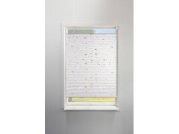 my home Plissee »Dots«, Lichtschutz, ohne Bohren, verspannt, Foliendruck