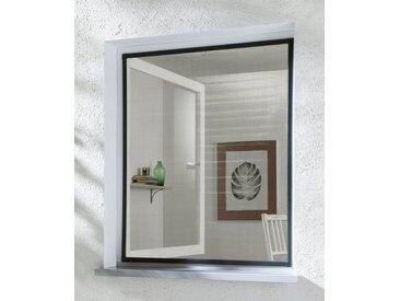 hecht international HECHT Insektenschutz-Fenster »BASIC«, anthrazit/anthrazit, BxH: 80x100 cm, grau, Fenster, 80 cm x 100 cm, anthrazit