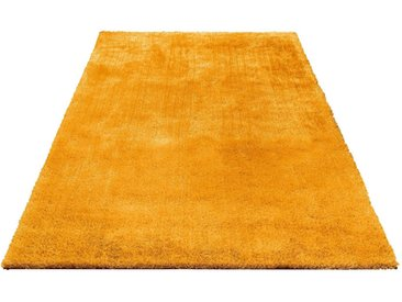 Bruno Banani Hochflor-Teppich »Dana«, rechteckig, Höhe 30 mm, Besonders weich durch Microfaser, gelb, gelb
