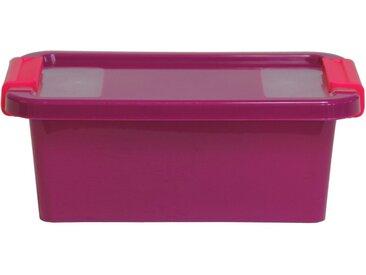 ONDIS24 Aufbewahrungsbox »Aufbewahrungsbox mit Deckel Klipp Box XS Lagerbox 2,5 Liter«, lila, flieder