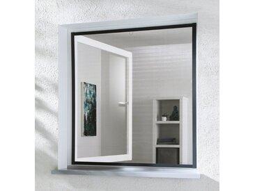 hecht international HECHT Insektenschutz-Fenster »MASTER SLIM«, anthrazit/anthrazit, BxH: 150x160 cm, grau, Fenster, 150 cm x 160 cm, anthrazit