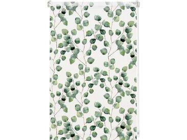 GARDINIA Seitenzugrollo, Lichtschutz, verspannt, Easyfix Tageslicht Rollo Digiprint Dekor, weiß, weiß-blattgrün