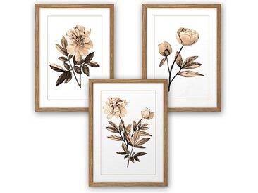 Kreative Feder Poster, Blume, Blüte, sepia, Zeichnung, Natur, Garten (Set, 4 Stück), 3-teiliges Poster-Set, Kunstdruck, Wandbild, wahlw. in DIN A4 / A3, 3-WP073