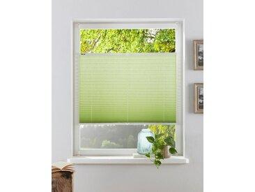 my home Plissee »Dahra«, Lichtschutz, ohne Bohren, verspannt, im Fixmaß, Crushed-Optik, grün, grün