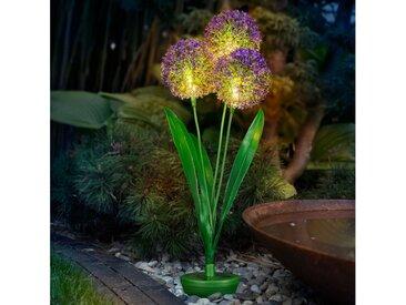 IC Gardenstyle LED Solarleuchte »Solar Pusteblume mit warm-weißer LED Beleuchtung«, kabellos, ca. 80cm hoch, automatische Einschaltung, inkl. Erdspieß, Kunstblume mit Solarlampe