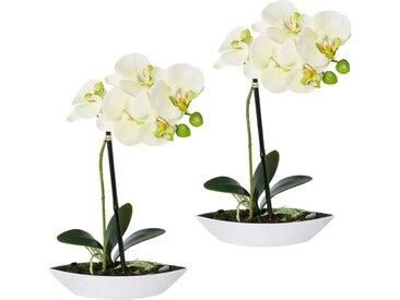 Creativ green Kunstorchidee »Phalaenopsis«, Höhe 30 cm, 2er Set, in Kunststoffschale, grün, grün