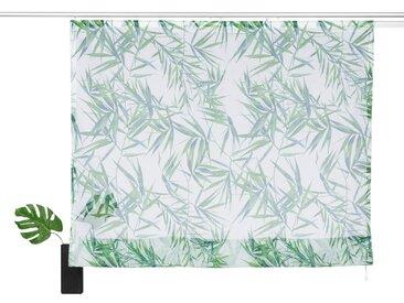 my home Raffrollo »Bambus«, mit Klettschiene