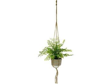 Künstliche Zimmerpflanze »Frauenhaar«, höhe 40 Zentimeter, in Hängeampel
