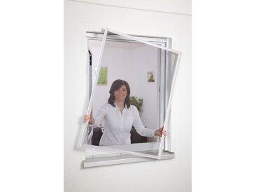 hecht international HECHT Insektenschutz-Fenster »BASIC«, weiß/anthrazit, BxH: 80x100 cm, grau, Fenster, 80 cm x 100 cm, anthrazit