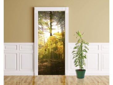 Bilderdepot24 Deco-Panel, Türaufkleber - Sonnenstrahlen im Wald