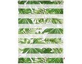 LICHTBLICK ORIGINAL Doppelrollo »Duo Rollo Motiv Blätter«, Lichtschutz, ohne Bohren, freihängend, bedruckt, grün