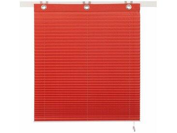 my home Selection Plissee »Kadaro«, Lichtschutz, ohne Bohren, freihängend, Faltenstore, Lichtschutz, rot, kupferfarben