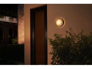 Philips Hue LED Außen-Wandleuchte »Daylo«, schwarz, schwarz