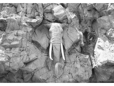 Consalnet Fototapete »Elefant im Felsen«, glatt, Motiv
