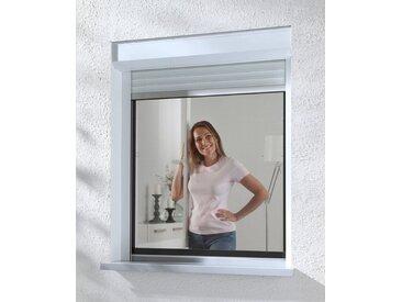 hecht international Insektenschutz-Fenster »COMPACT«, anthrazit/anthrazit, BxH: 130x150 cm