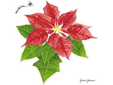 Paper+Design Papierserviette »Weihnachtsstern Blüte«, 33 cm x 33 cm