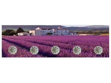 HTI-Line Garderobenleiste »Garderobe Lavendel«