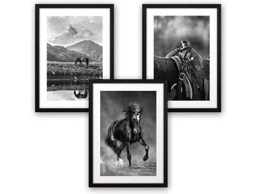 Kreative Feder Poster, Natur, Landschaft, Tier, Pferd, Reiten, Schwarz-Weiß, Fotografie (Set, 3 Stück), 3-teiliges Poster-Set, Kunstdruck, Wandbild, wahlw. in DIN A4 / A3, 3-WP104
