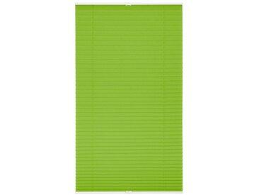 LICHTBLICK Plissee »Klemmfix«, Lichtschutz, ohne Bohren, verspannt, Faltenstore, grün, grün