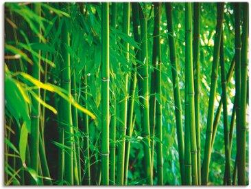 Artland Wandbild »Bambus I«, Gräser (1 Stück), in vielen Größen & Produktarten -Leinwandbild, Poster