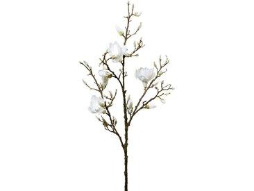 Creativ green Kunstzweig »Zweig Magnolie«, Höhe 136 cm, weiß, weiß