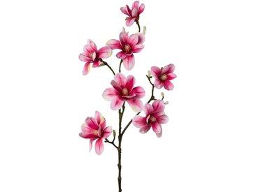 Creativ green Kunstzweig »Zweig Magnolie«, Höhe 104 cm, rosa, pink