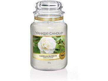 Yankee Candle Duftkerze »Classic Housewarmer Groß Camellia Blossom«