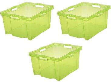 keeeper Aufbewahrungsbox »franz« (Set, 3 Stück), 24 Liter, grün, grün
