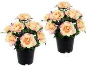 I.GE.A. Kunstblume »Rosen im Topf«, Höhe 25 cm, 2er Set, rosa, rosa