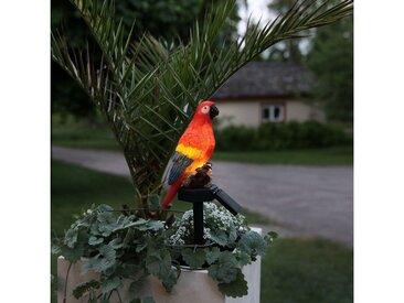 STAR TRADING LED Dekoobjekt »LED Solar Gartenfigur bunter Papagei auf Stab Solarleuchte H: 31cm Lichtsensor«