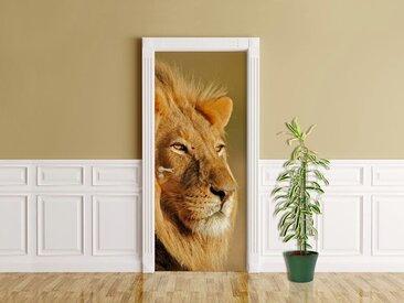 Bilderdepot24 Deco-Panel, Türaufkleber - Afrikanischer Löwe