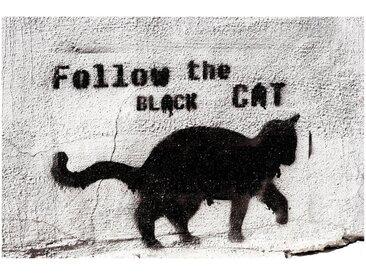 Art & Pleasure Metallbild »Follow the black cat«, Katzen