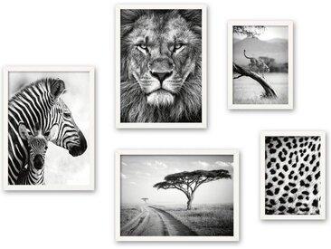 Kreative Feder Poster, Schwarz Weiß, Fotografie, Afrika, Löwe, Savanne, Zebra (Set, 5 Stück), 5-teiliges Poster-Set, Kunstdruck, Wandbild, Posterwand, Bilderwand