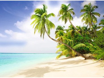 Papermoon Fototapete »Beach in the South Seas«, glatt, 8 St.
