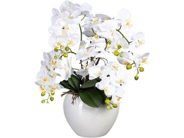 Creativ green Kunstorchidee »Phalaenopsis« Orchidee Phalaenopsis, Höhe 56 cm, im Keramiktopf, weiß, weiß