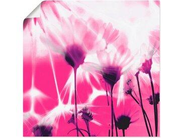 Artland Wandbild »Pusteblume abstrakt«, Blumen (1 Stück), Poster