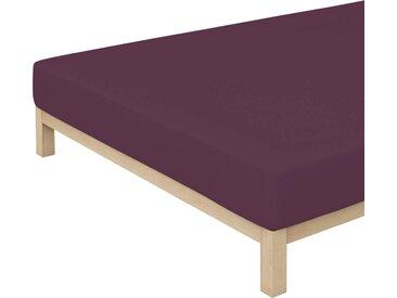 Schlafgut Spannbettlaken »Pure«, nachhaltige Zero Waste Verpackung, lila, purple deep