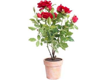 Botanic-Haus Kunstblume »Rosenstock« Rose, Höhe 46 cm