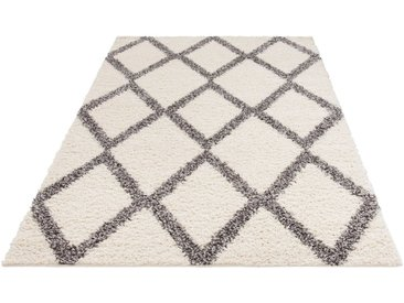 my home Hochflor-Teppich »Linz«, rechteckig, Höhe 31 mm, dichter Flor, weiß, weiß-grau