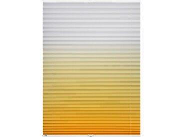 K-HOME Plissee »Farbverlauf«, Lichtschutz, ohne Bohren, verspannt, gelb, gelb