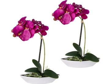 Creativ green Kunstorchidee »Phalaenopsis«, Höhe 30 cm, 2er Set, in Kunststoffschale, lila, lila