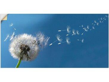 Artland Wandbild »Pusteblume«, Blumen (1 Stück), in vielen Größen & Produktarten - Alubild / Outdoorbild für den Außenbereich, Leinwandbild, Poster