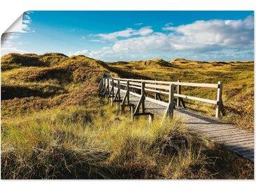 Artland Wandbild »Landschaft in den Dünen Insel Amrum«, Küste (1 Stück), Poster